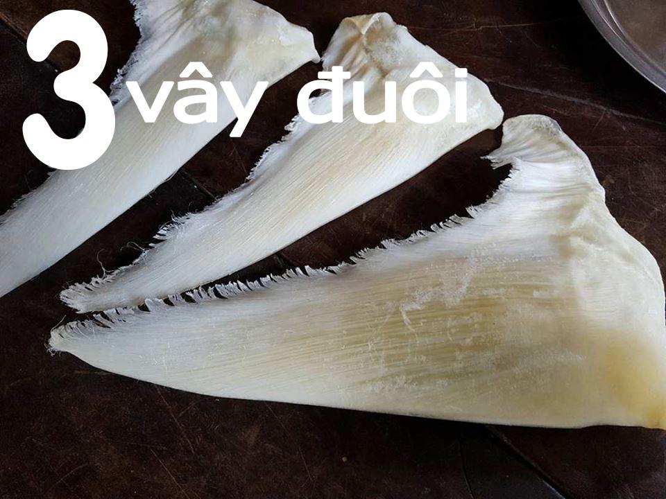 vi cá mập cao cấp